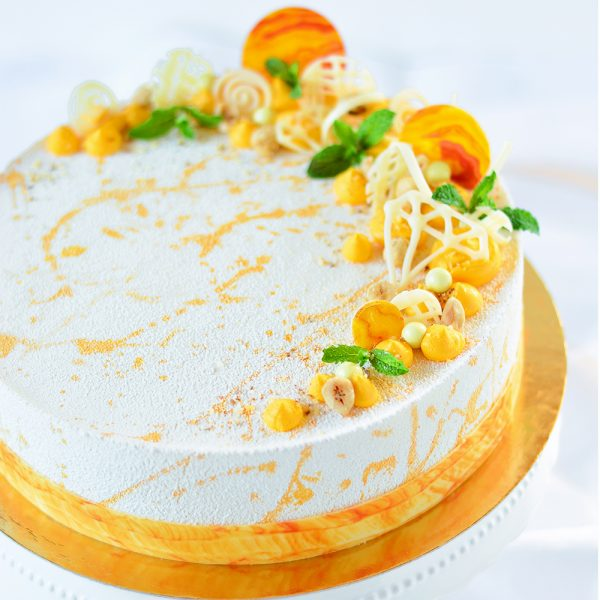Weiße Schokolade-Marillen-Torte